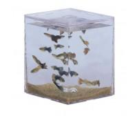 Mini aquarium MBA-1