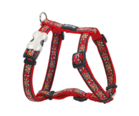 Harness RedDingo Edelweiss Red Small 12mm