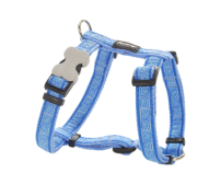 Harness RedDingo Hypno Medium Blue Small 12mm